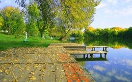 Het meer van de herfst stock foto's