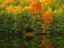 Het meer van de herfst Stock Foto