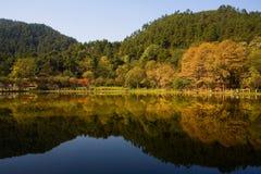 Het Meer van de herfst Stock Afbeelding