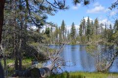 Het Meer van de klip, Park Lassen Royalty-vrije Stock Afbeeldingen