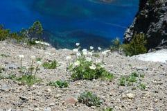 Het Meer van de krater, Oregon Royalty-vrije Stock Foto's