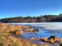 Het meer van de lente Stock Afbeelding