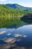 Het meer van de ratelslang Royalty-vrije Stock Foto's
