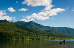 Het meer van de ratelslang Royalty-vrije Stock Afbeelding