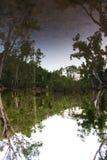 Het meer van de spiegelbezinning in Byfield Stock Afbeelding