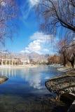 Het meer van de winter Stock Fotografie