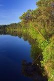 Het meer van de zomer Royalty-vrije Stock Afbeelding