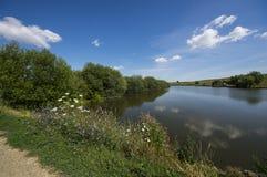 Het meer van de zomer Royalty-vrije Stock Fotografie