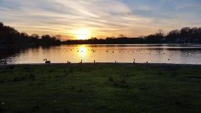 Het Meer van de zonsondergang Royalty-vrije Stock Fotografie