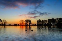 Het meer van de zonsopgang Stock Foto's