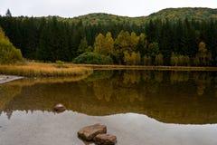Het meer van heilige Anna op een bewolkte dag Stock Foto