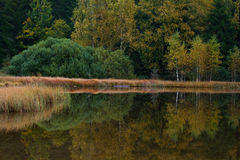 Het meer van heilige Anna op een bewolkte dag Royalty-vrije Stock Afbeeldingen