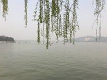 Het meer van het de zomerpaleis Royalty-vrije Stock Fotografie