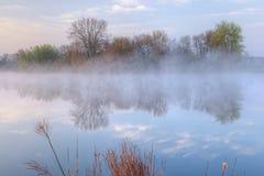 Het Meer van het Gat van Jackson in Mist stock foto's