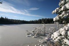 Het meer van het ijs cowerd Royalty-vrije Stock Fotografie