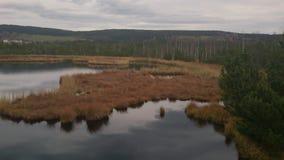 Het meer van het turfmoeras (Tsjechisch nationaal park) Royalty-vrije Stock Foto