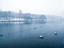 Het Meer van het Westen van Hangzhou Royalty-vrije Stock Foto