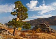 Het meer van Jasybay royalty-vrije stock afbeelding