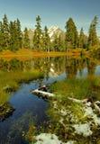 Het Meer van Laughington in de herfst Stock Fotografie
