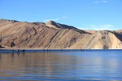 Het meer van Pangong Stock Foto