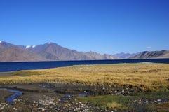 Het meer van Pangong Stock Fotografie