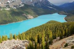 Het meer van Peyto royalty-vrije stock afbeelding