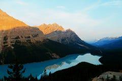 Het Meer van Peyto, Alberta, Canada stock afbeelding