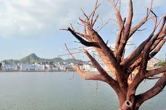 Het Meer van Pushkar Stock Foto's