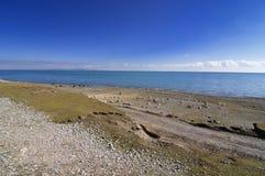 Het meer van Qinghai Stock Afbeeldingen