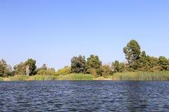 In het meer van het Regionale Park van het Oosten van Gr Dorado Royalty-vrije Stock Foto's