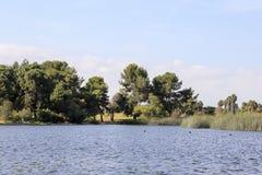 In het meer van het Regionale Park van het Oosten van Gr Dorado Royalty-vrije Stock Afbeelding