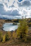 Het Meer van het rotseiland op Zonneschijnweiden in Canada ` s Nationale Banff Stock Fotografie