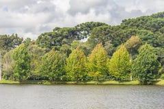 Het meer van Saobernardo Stock Foto's