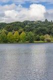 Het meer van Saobernardo Stock Afbeeldingen