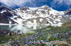 Het meer van Siltran met het flovering van weide Royalty-vrije Stock Afbeelding