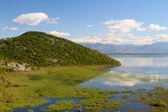 Het meer van Skadar Stock Afbeelding