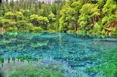 Het meer van Tibet Stock Foto's
