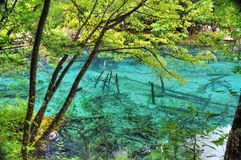 Het meer van Tibet Stock Fotografie