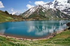 Alpien meer Stock Afbeeldingen