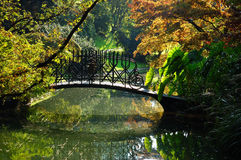 Het meer van tuinen stock foto's