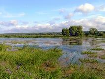Het meer van Tulchinskoe. Stock Fotografie