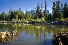 Het Meer van vissen, Oregon stock fotografie