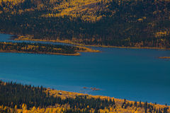Het Meer van vissen, Yukon Grondgebied, Canada stock afbeelding