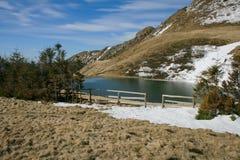 Het meer van Vulturilor Stock Afbeeldingen
