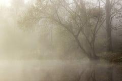 Het meer van Zen met mist royalty-vrije stock foto