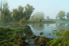 Het meer in weiden Stock Foto's