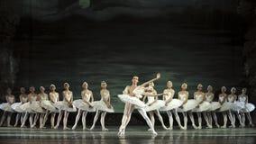 Het meerballet van de zwaan dat door Russisch koninklijk ballet wordt uitgevoerd Stock Foto's