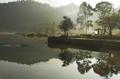 Het meerbezinning van het regenwoud Stock Foto's