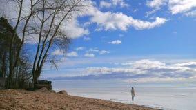 Het meerlandschap van de winter Het meisje kijkt op Ijs, Blauwe Hemel, Zon en Wolken stock videobeelden