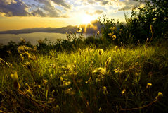 Het meerlandschap van Garda Stock Foto's